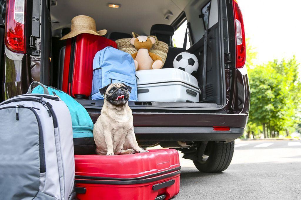 В отпуск на автомобиле: как правильно подготовиться?